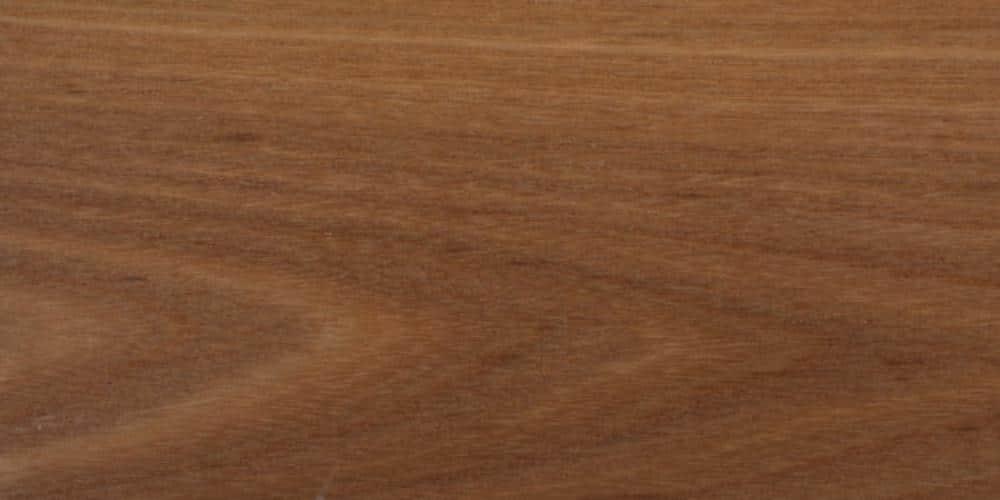 Elm - Red Lumber @ Rare Woods USA