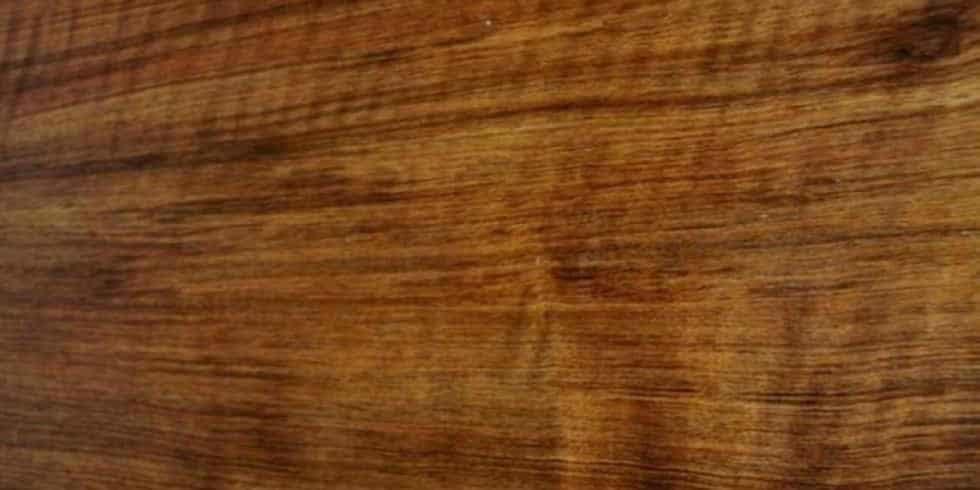 Tamboti Lumber @ Rare Woods USA