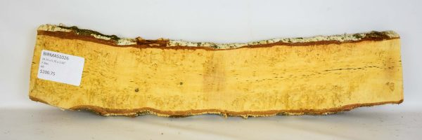 Birch – Masur